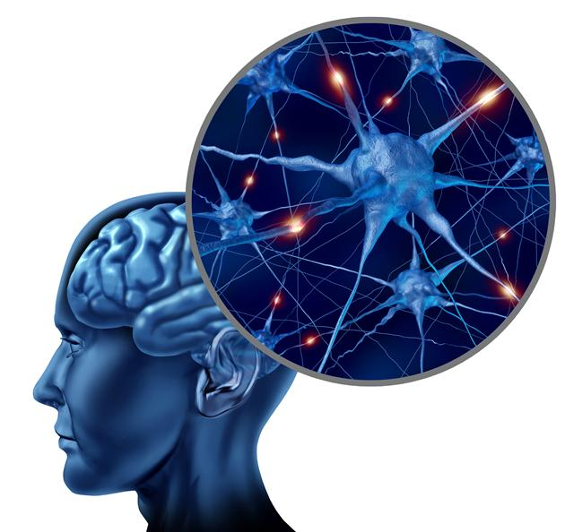 Brain Mapping May Unlock Autism Mysteries