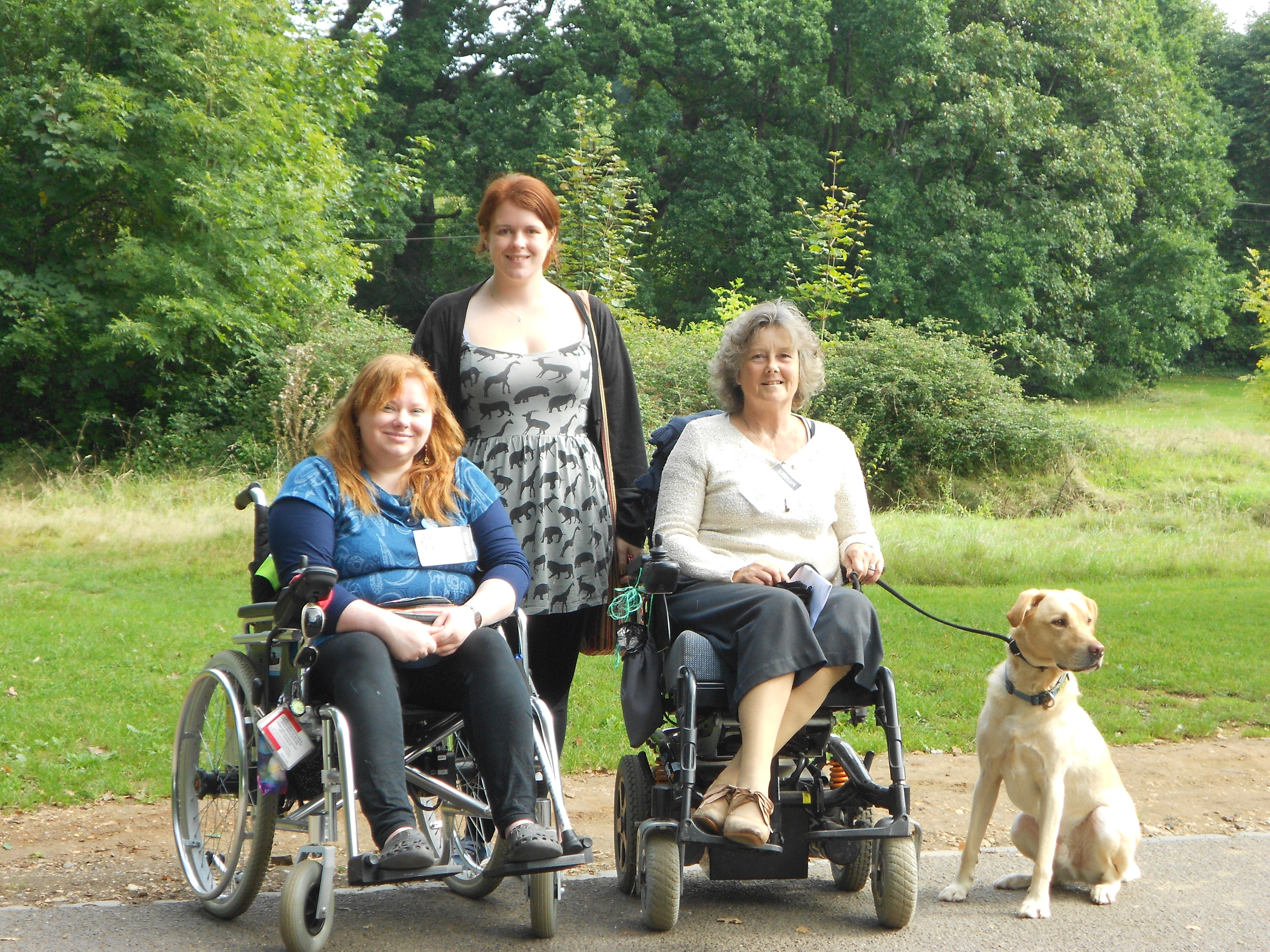 Disability charity raising money to train dogs