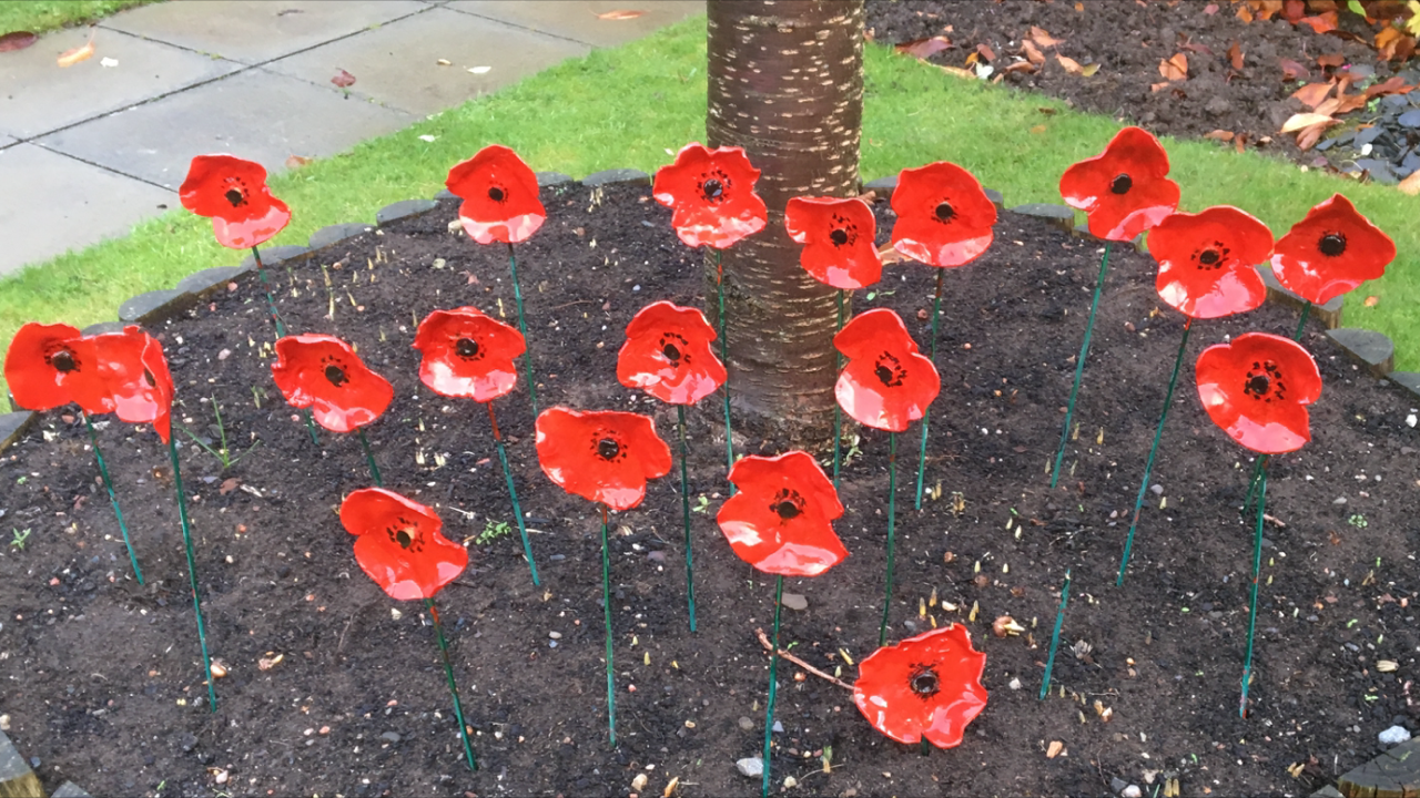 Ayr Care Home's Remembrance Day Tribute