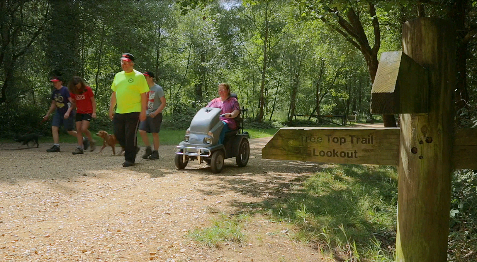 Try something new at Moors Valley on Disabled Access Day