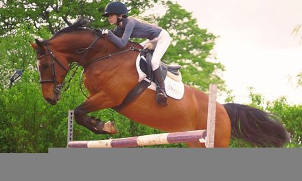 DMO help with showjumping dreams